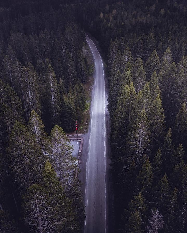Falstadskogen på Ekne