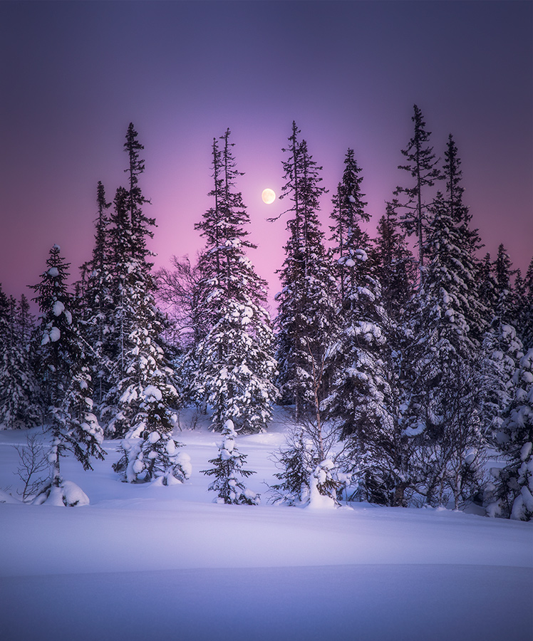 Moonset on a cold winter afternoon in Trondheim.