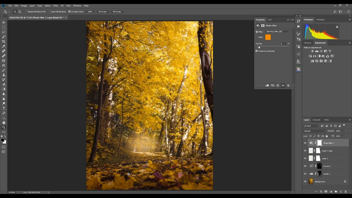 Autumn post-processing tutorial.