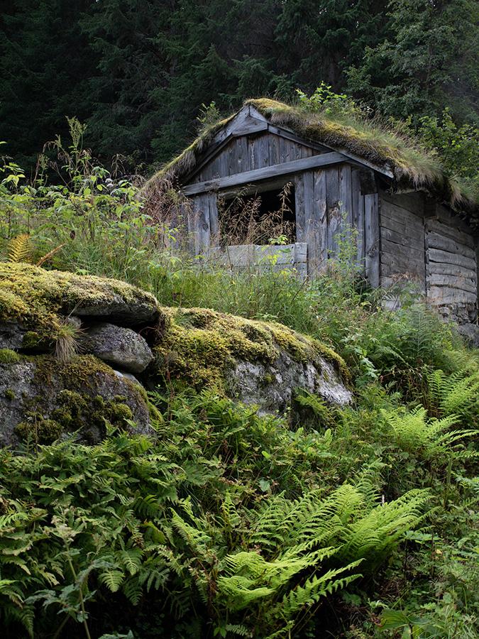 Learn how to create a moody cabin scene