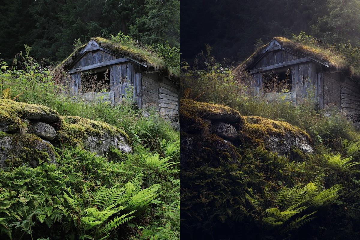 Nature photography tutorials