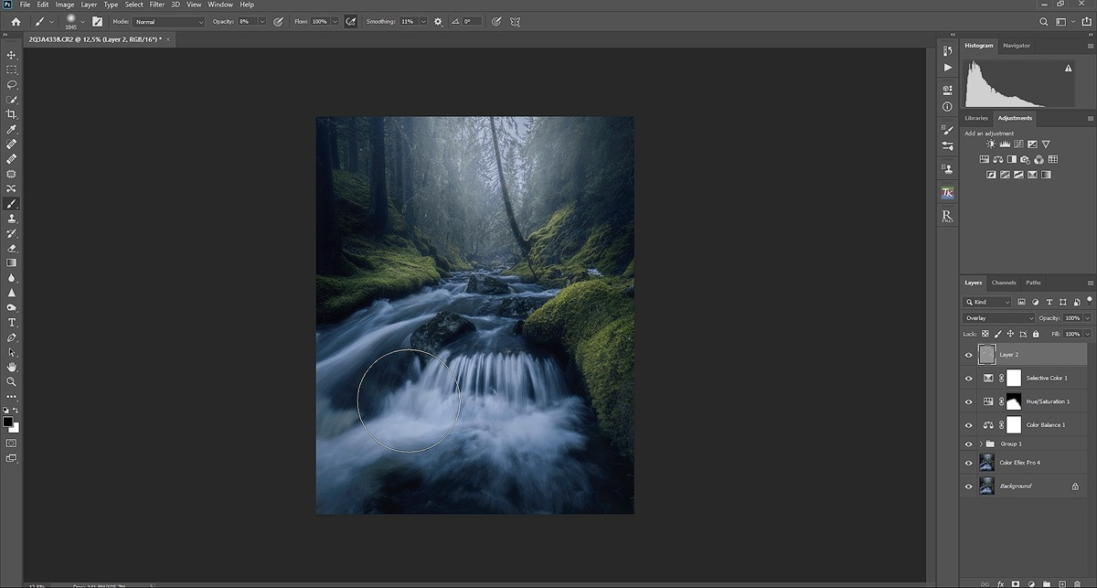Moody forest editing tutorial